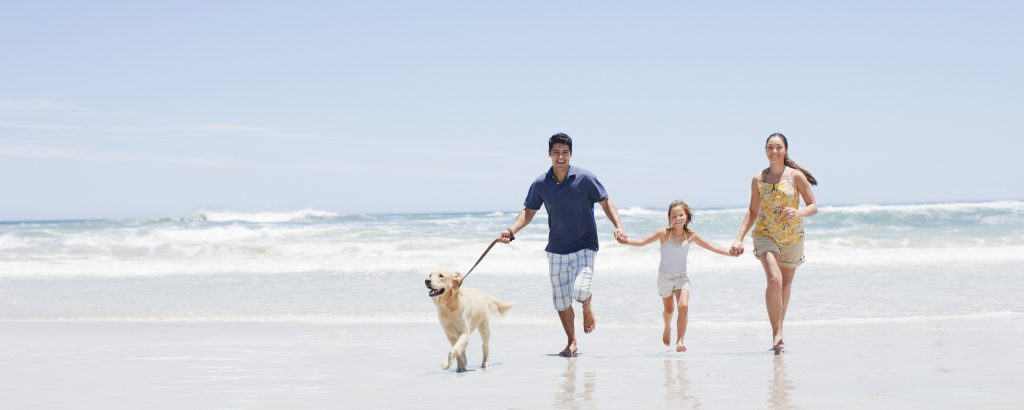 Bring Your Dog on Your Vacation to Folly Beach